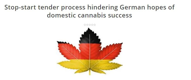 CannabisLawReport